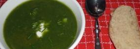 Den grønne suppe