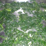 Fordel spinaten i et ovnfast fad.