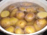 Kog kartoflerne i det salte vand.