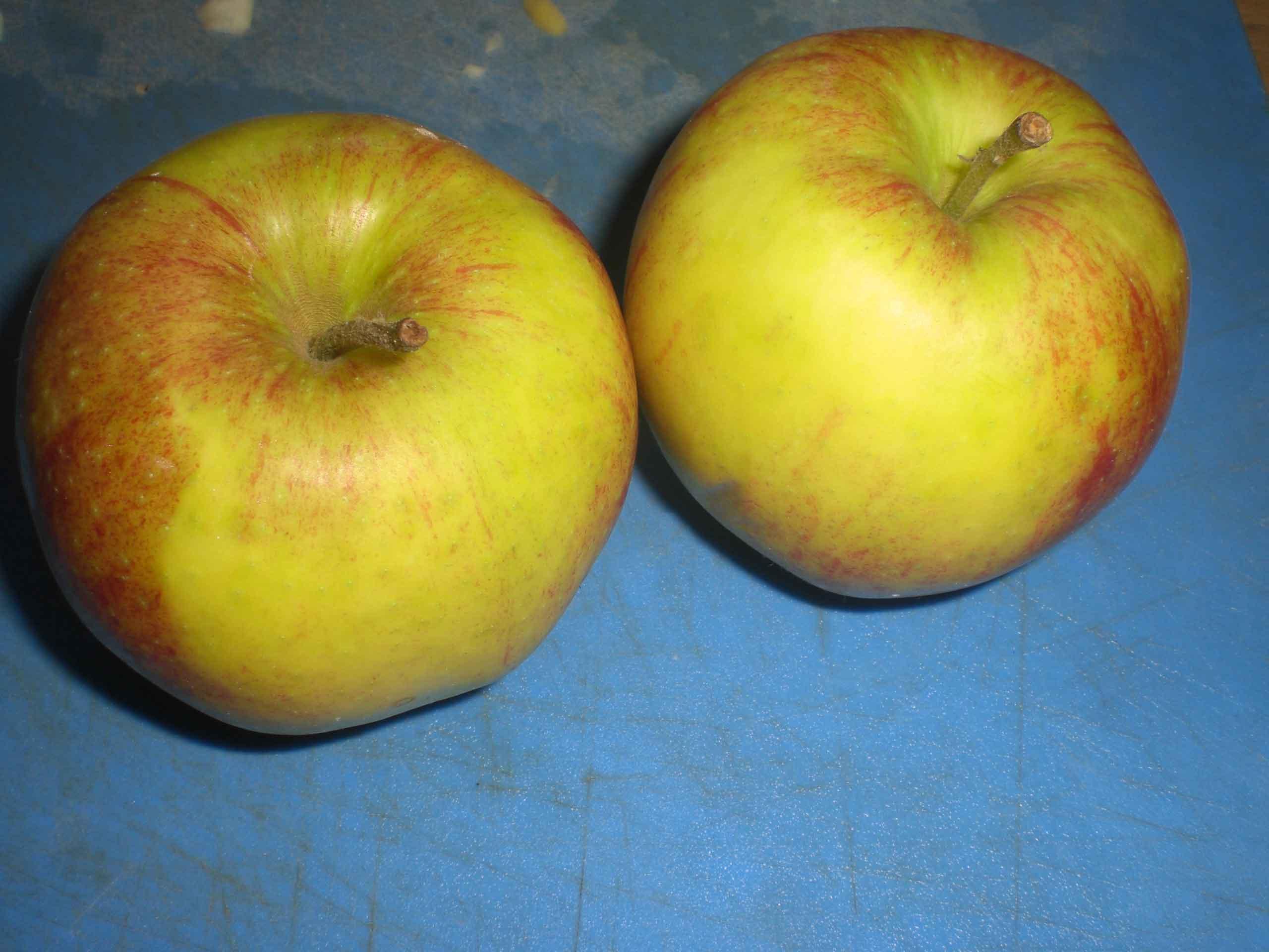 Skræl æblerne, hvis skrællen er sej.