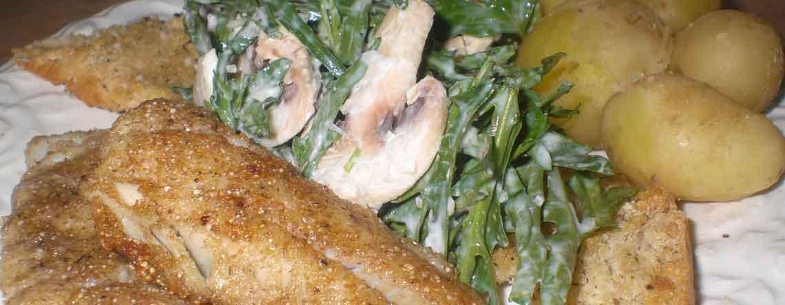 Mørksej med salat og ristet brød