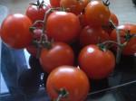 Vej tomaterne af.