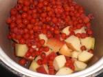 Kog saften af frugten.