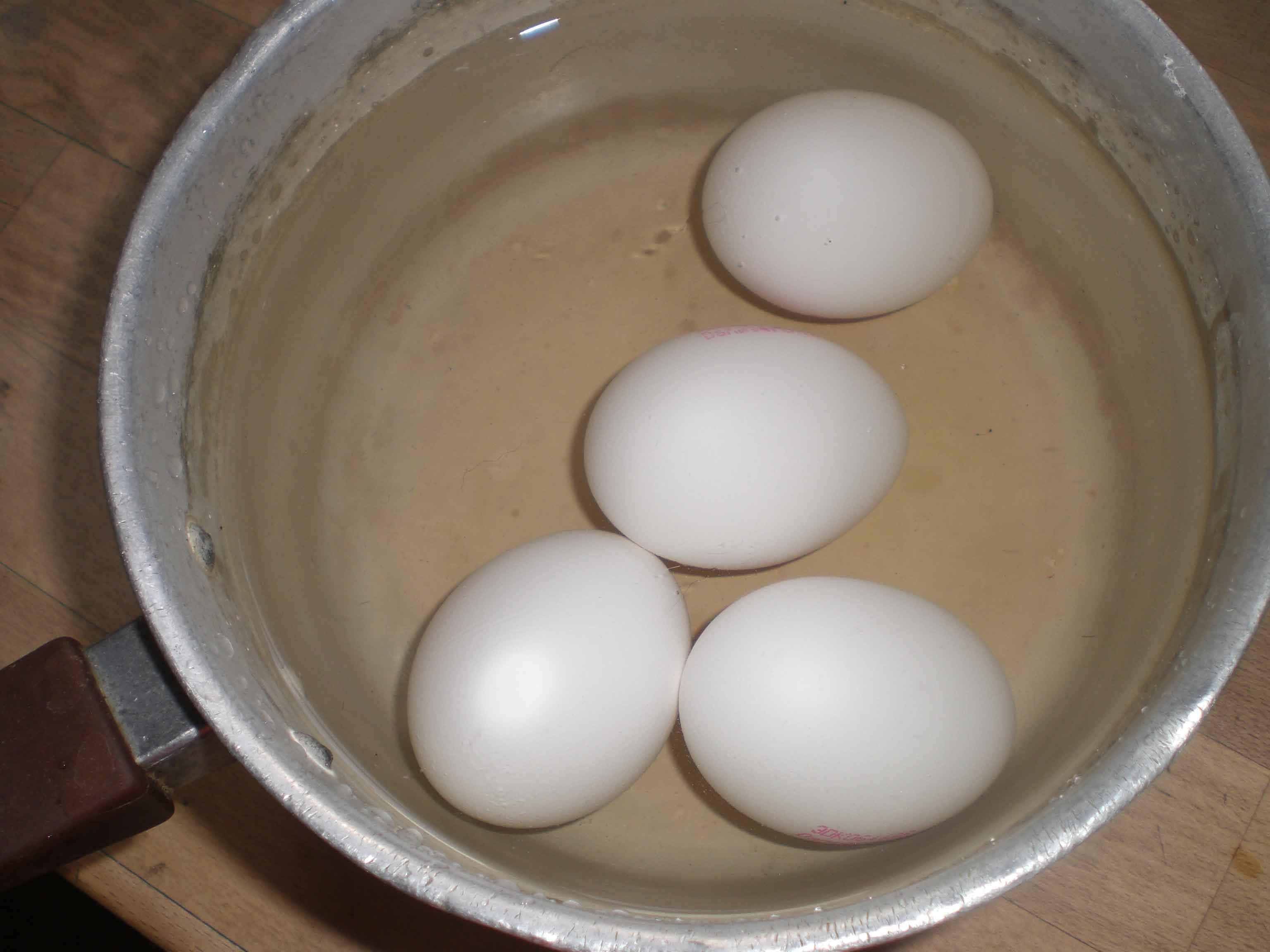 kogning æg