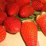 Skyl jordbærrene.